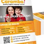 ACADEMIA CARAMBA! - Flyer