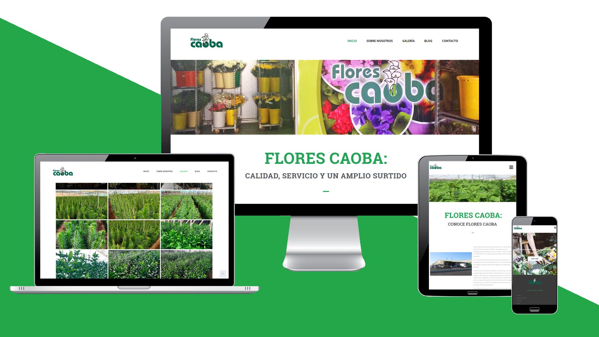 FLORES CAOBA - Web